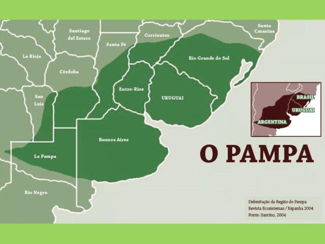 Mapa bioma pampa