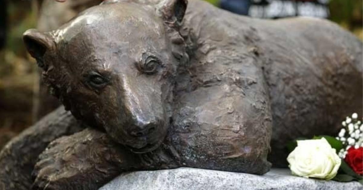 urso polar Knut estátua