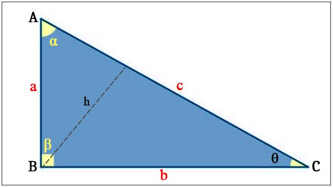 Triângulo - Componentes