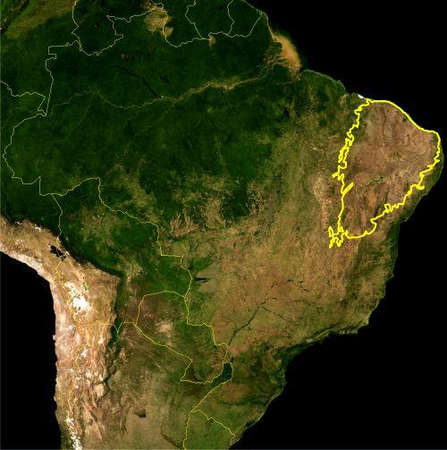 Mapa caatinga