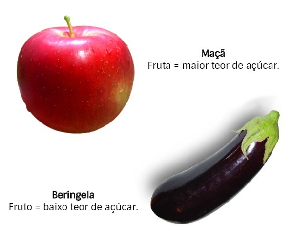 fruta e fruto