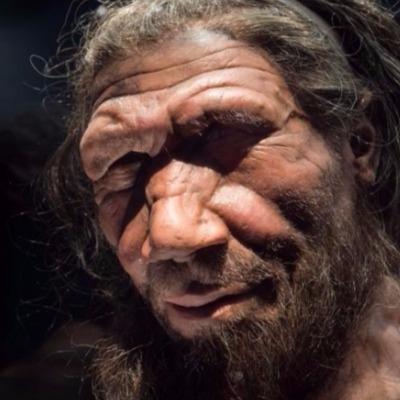 homem neandertal